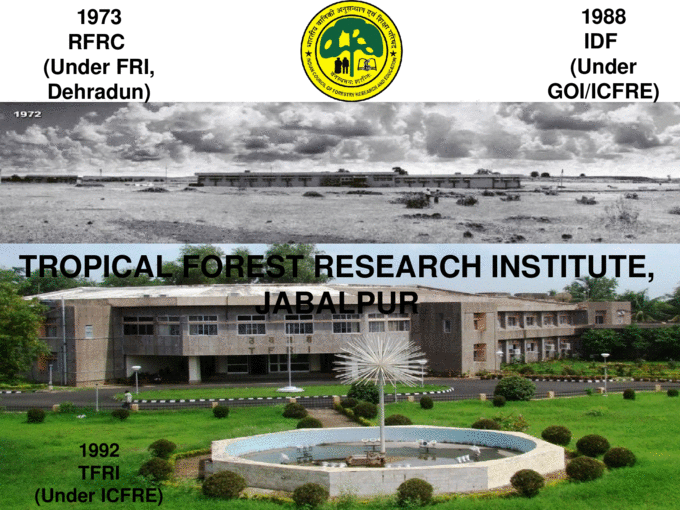 Tropical Forest Research Institute